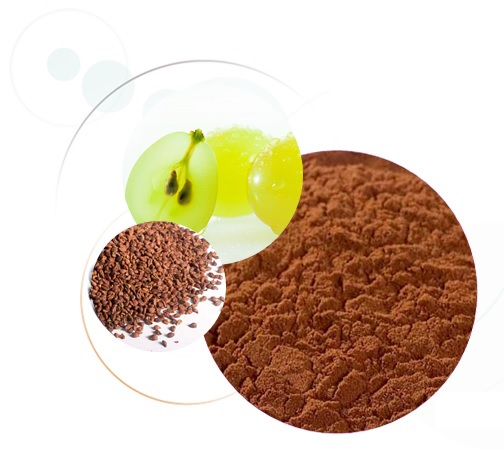 Grape Seed And Olive Extract  GrapSud